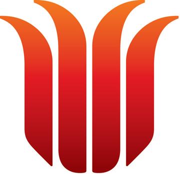 Indigenous Representative Council Image